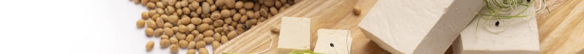 Specialități vegetale, inlocuitor de lactate